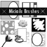 Flowers and Frames Brushes by Miciaila