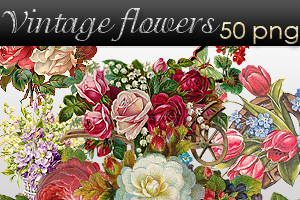 Vintage flower pack by AyameRD