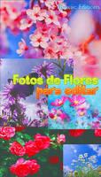 Fotos de Flores -Para Editar- by Thoxiic-Editions