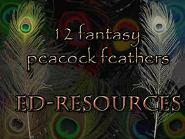 Peacock Feather Plumes
