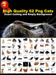High Quality 62 Png Cats Stock