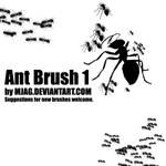Brushes: ANT 1