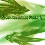 Sool ABstract 3