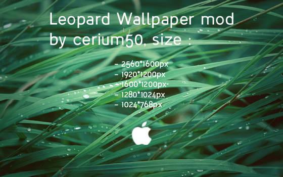 Leopard Wallpaper Mod