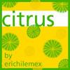 Citrus by erichilemex
