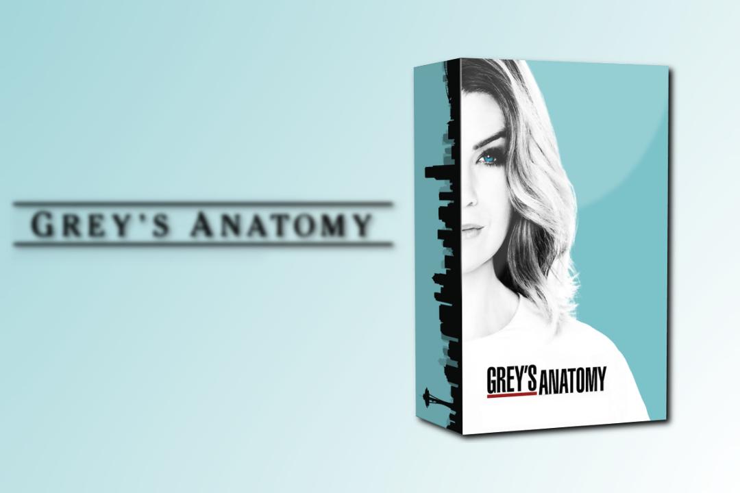 Grey\'s Anatomy Season 13 DVD Box Folder Icon by MaxineChernikoff on ...