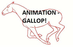 Laetitia - Gallop ANIMATION WIP