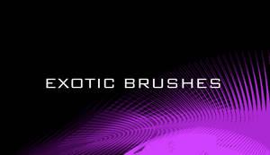 Exotic Brushes