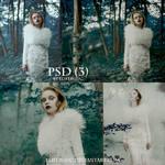 PSD (3)