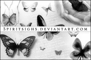 Butterflies by spiritsighs-stock