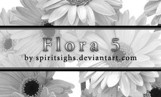 Flora 5 by spiritsighs-stock