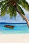 - Background - paradise