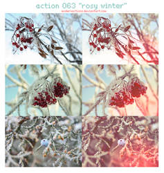 ACTION 063 'ROSY WINTER' by ModernActions