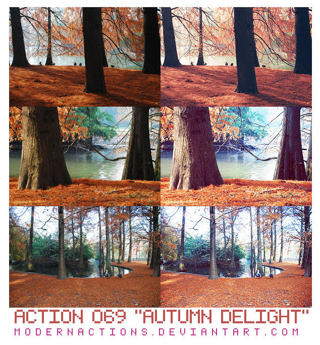 "ACTION 069 ""AUTUMN DELIGHT"" by ModernActions"