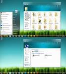 Windows 7 Longhorn Skull