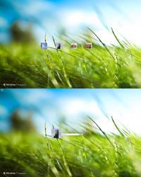 Aero Grass Logon Windows 7 by dejco