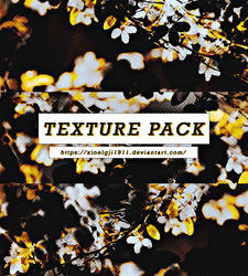 [Texture pack]
