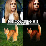 PSD coloring #13