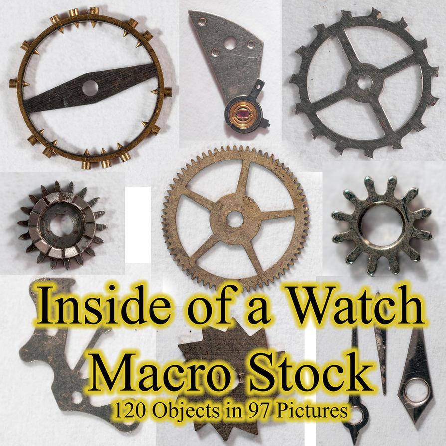 Inside Of A Watch Macro Stock By Horitsu by Horitsu