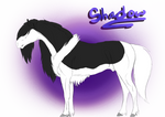 21 | Shadow