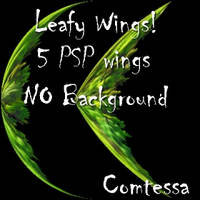 Leafy Wings 1 by Comtessa-Stock