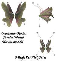 Wings Flower Wings 1 by Comtessa-Stock