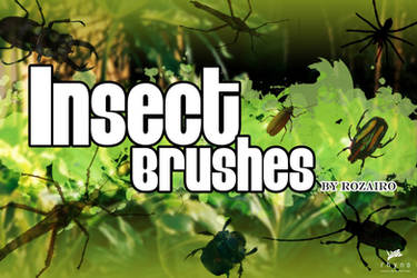 Insect Brushes