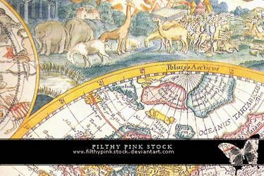 Texture - Paper - Old Maps by FilthyPinkStock