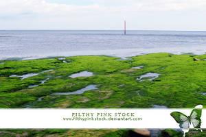 Stock - Empty Beach by FilthyPinkStock