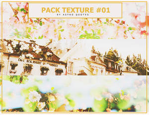 PACK TEXTURE #03