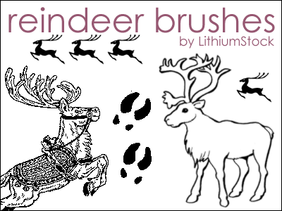 Reindeer Brushes I by LithiumStock