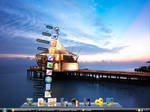 Real Leopard Dock