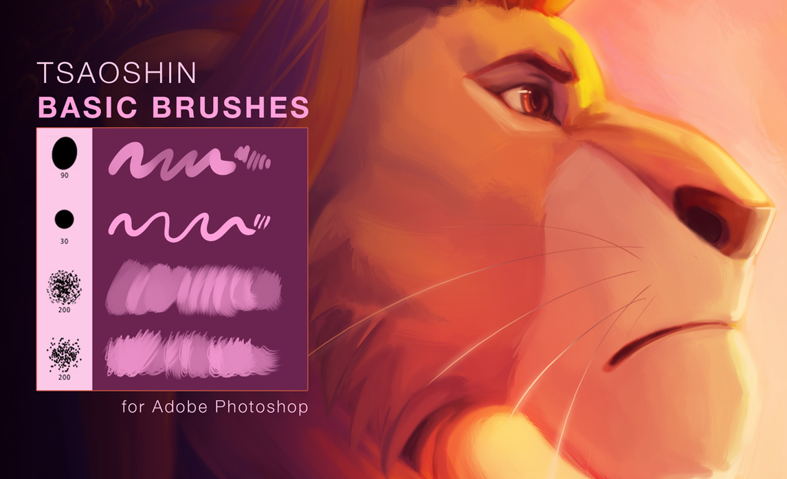 TsaoShin Brushes by TsaoShin