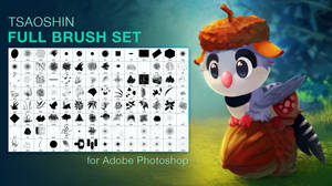 TsaoShin Full Brushes Set