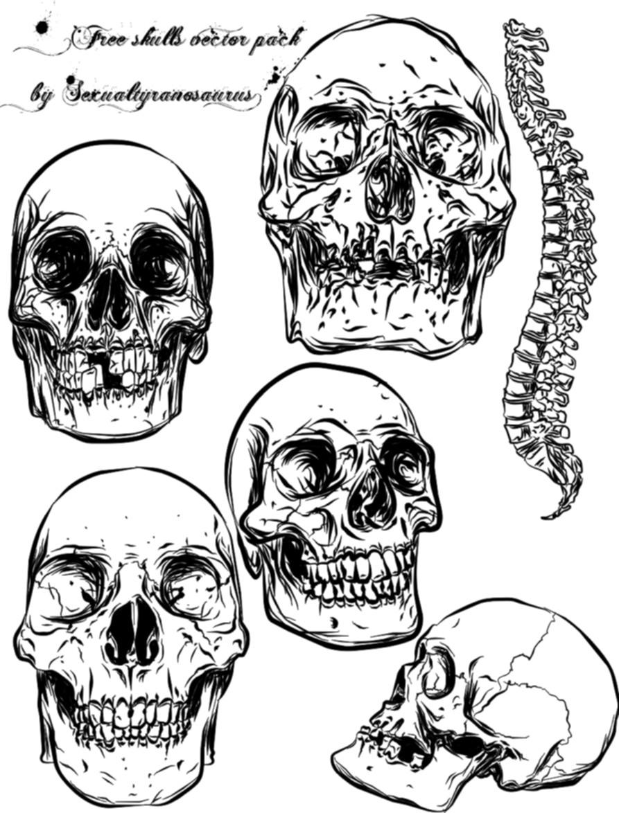 skull vector pack by sexualtyranosaurus