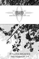 Brushes - Flora 02 by kkako