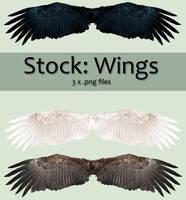 Stock: Wings set 1 by kkako