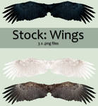 Stock: Wings set 1