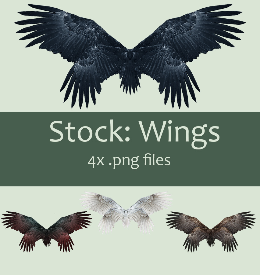 Stock: Wings set 2 by kkako