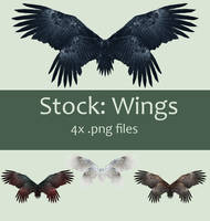 Stock: Wings set 2 by kkako