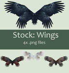 Stock: Wings set 2
