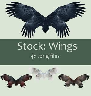 Stock: Wings set 2
