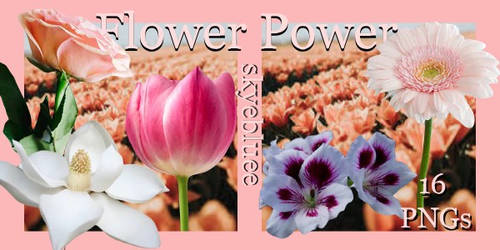 Flower Power - Png Pack