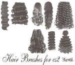 Hairbrushes cs2