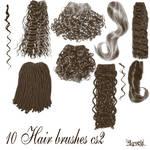 10 hair brushes cs2
