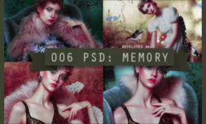 006 PSD: memory