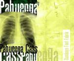 Font Pahuenga Cass