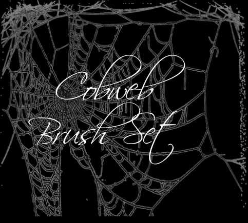 Cobweb Brush Set