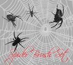 Spider Brush Set
