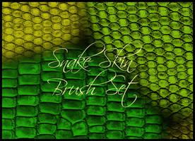 Snake Skin Brush Set